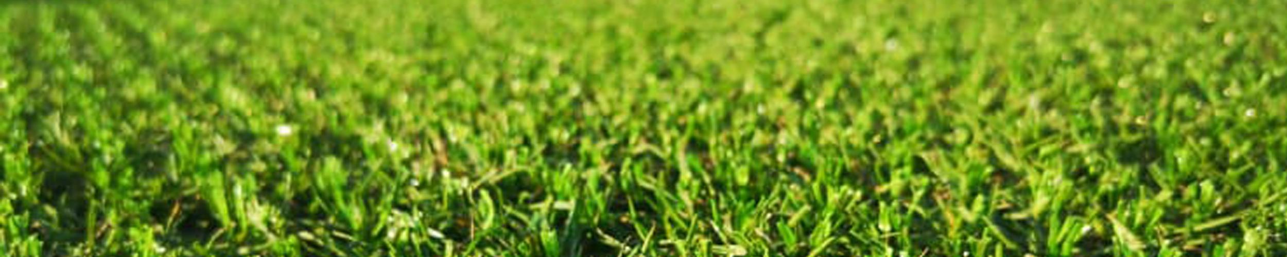 Bestaan er normen voor de aanleg van hybride voetbalvelden?